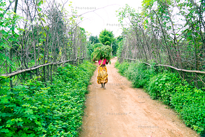 Woman carrying crop