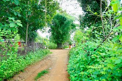 Muddy path in a village