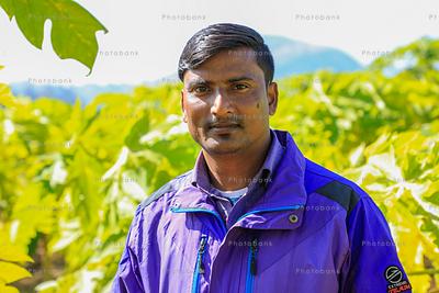 Male farmer portrait