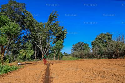 Unprepared field