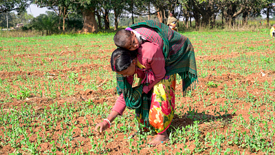 Woman carrying his baby on his back and farming