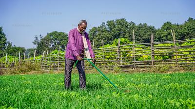 Farmer working on the field