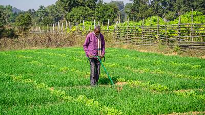 Farmer using machine in field