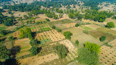 Aerial view of field