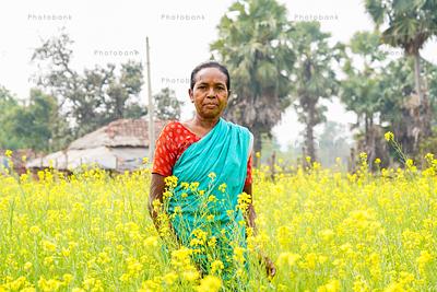 Woman standing in golden mustard field