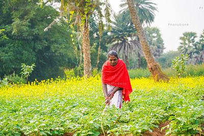 Woman farmer standing in her field