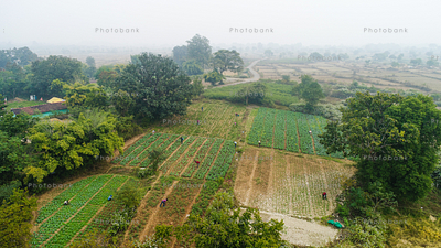 Aerial view of field in a village