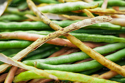 Long bean also known as cow pea