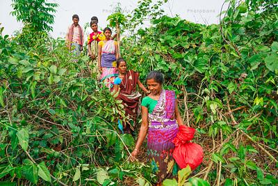 Indian village women and men in field