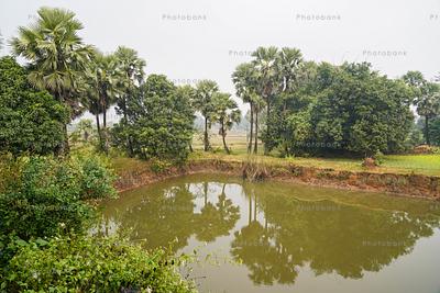 Landscape of Indian village