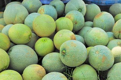 fresh melons of jharkhand