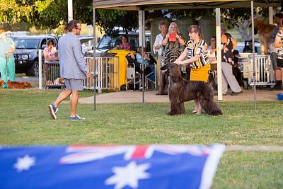 Australia Day Dog Show