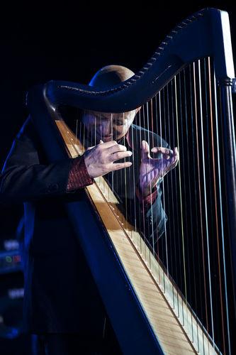 Cimarron Carlos Rojas, Columbian Grammy Nominee Harpist