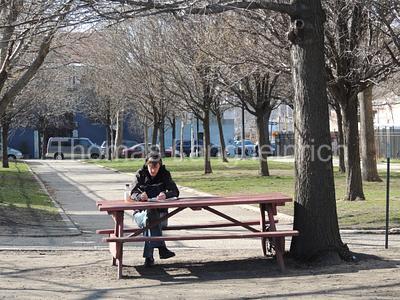 Park Study