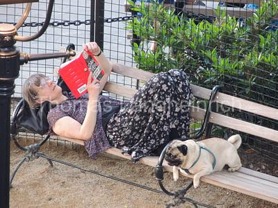 Pug and Pause