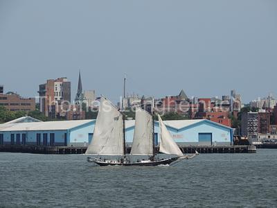 Bay Sailing