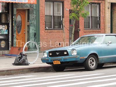 Parked Pony