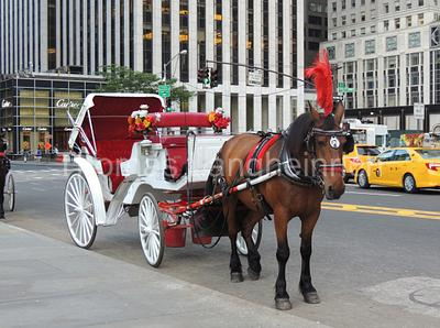 Classic Carriage