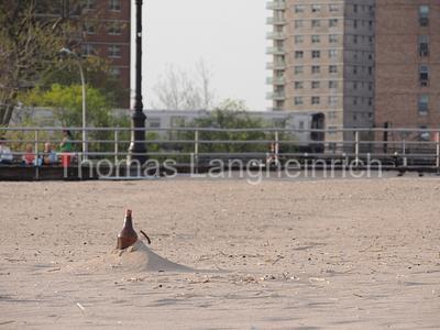 Sandy Remains