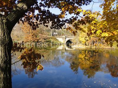 Lake Fall