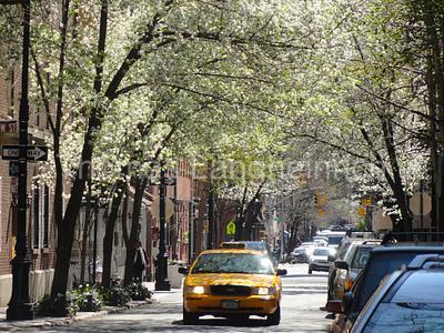 Spring Taxi