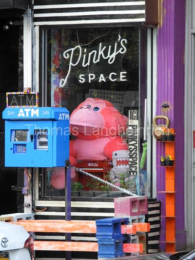 Pinkys Space