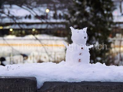 Smokin Snow Dog