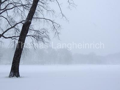 Central Park White-Out