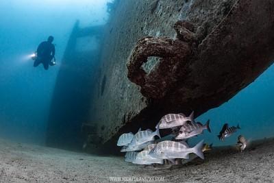 C-59 Wreck, La Paz, Baja California Sur, Mexico