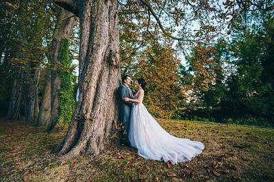 Amanda + Dillon Wedding Day