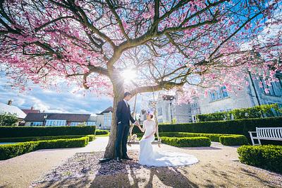 Ho Wen + To Sum Wedding Day