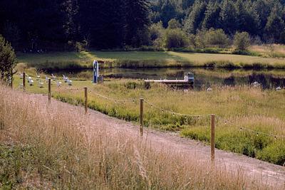Twin Creeks Farm - Princeton, Idaho | Wedding Venue Overview