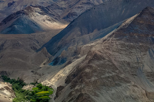 green oasis, ladakh 2012
