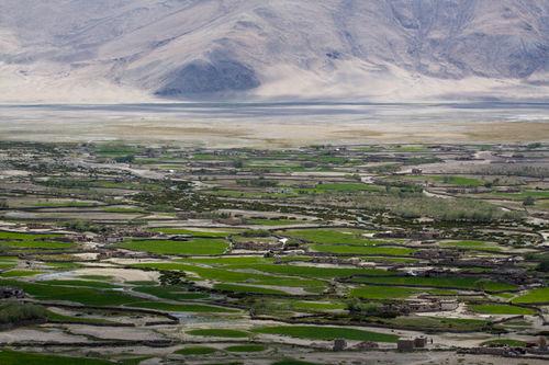 green ladakh 2011