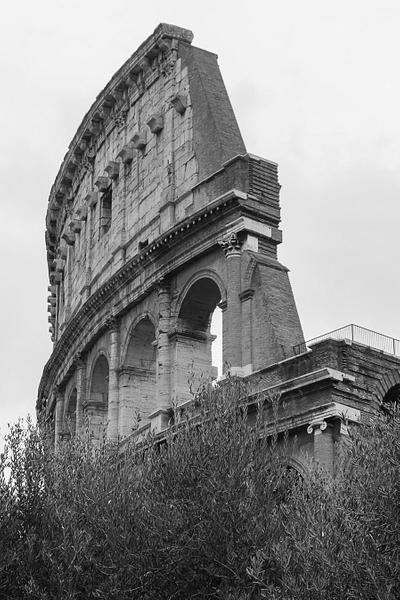 """The Colosseum"""