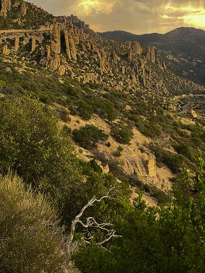 Catalina Mountains Wildfires