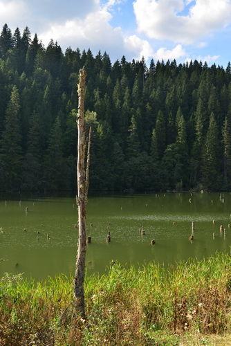 Lacul Rosu 0008