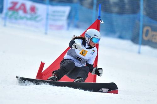 Snowboard 0011