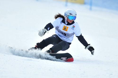 Snowboard 0010