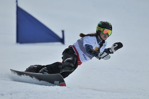 Snowboard 0015