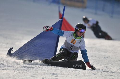 Snowboard 0017
