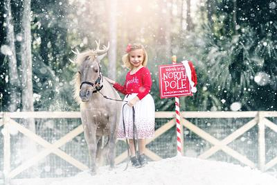 """Reindeer"" Mini Sessions"