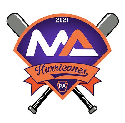 Baseball Banner and Pin Designs