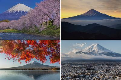 Four Seasons of Mount Fuji