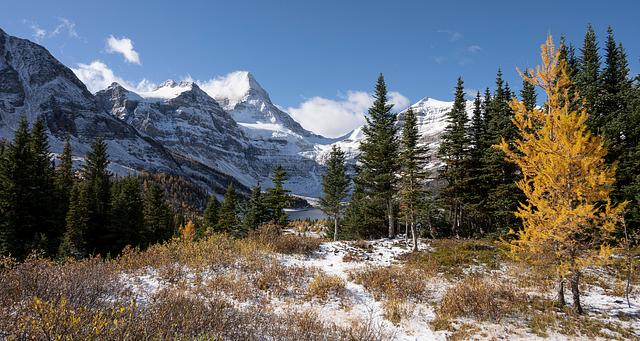 Assiniboine in Autumn