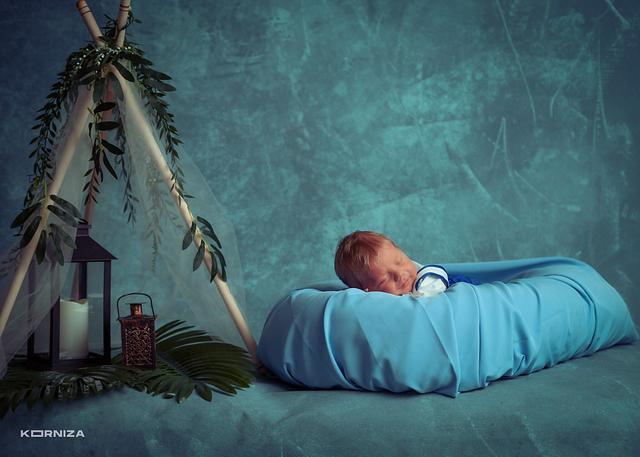 Babies / Foshnjet