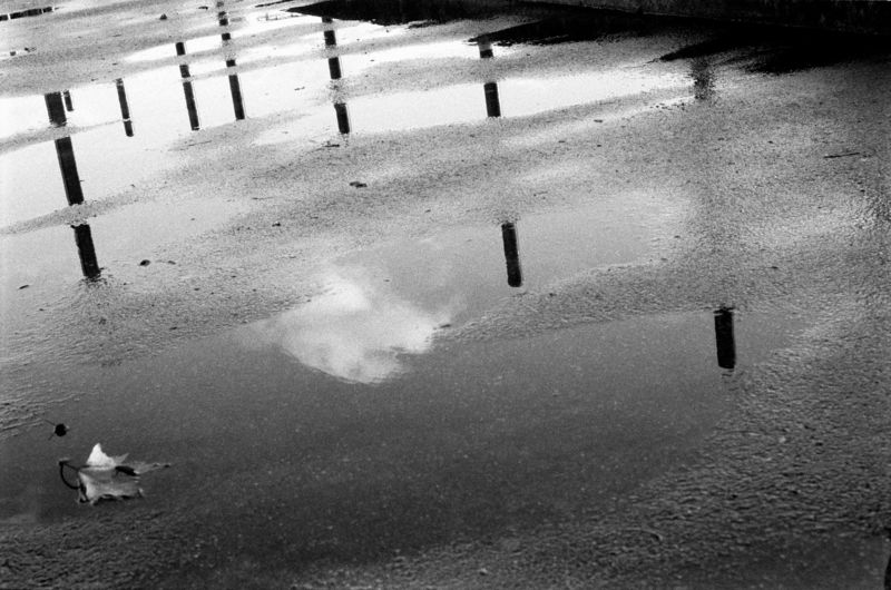 Reflections 07