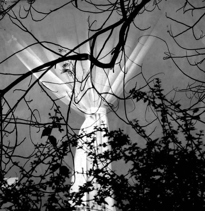 Enigmatic Window 02