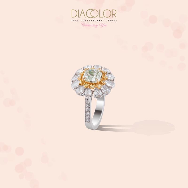 DIACOLOR - 2