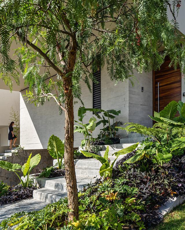 Entrelomas House | Gomez Loza Arquitectos